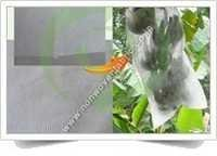 Non Woven Fruit Protection Cover