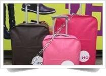 Non woven Luggage Cover