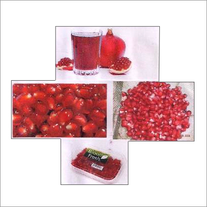 Pomegranates Processing Projects