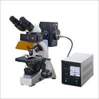 Fluorescent Microscopes