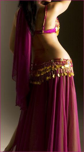 Belly Dance Purple Choli Belt Dress