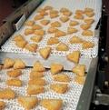 Frozen Food Belt Conveyor