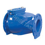 Resilient Soft Seated Non Return Valve
