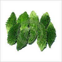 Karela Plants Services