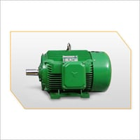 Spectrum Series Cage Closed Type AC Motor