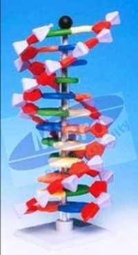 Molecular Layer Kit