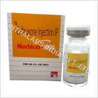 Morbicef 1000 Injection