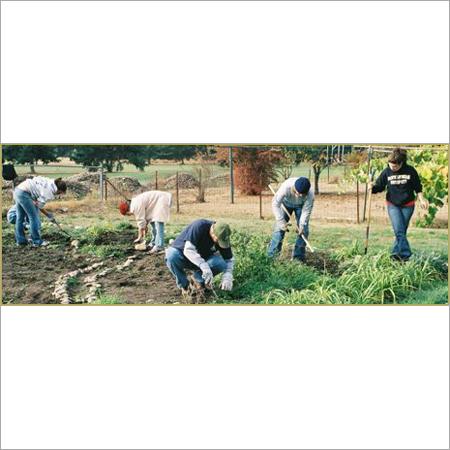 Gardening Workers
