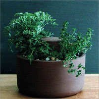 GRC Small Plants Pot