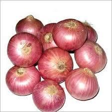south bellary onion