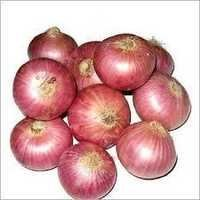 south bellary onion