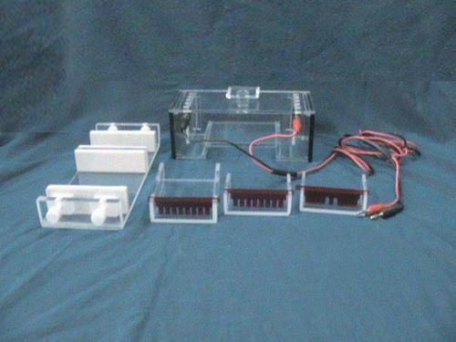 MINI Electrophoresis Systems