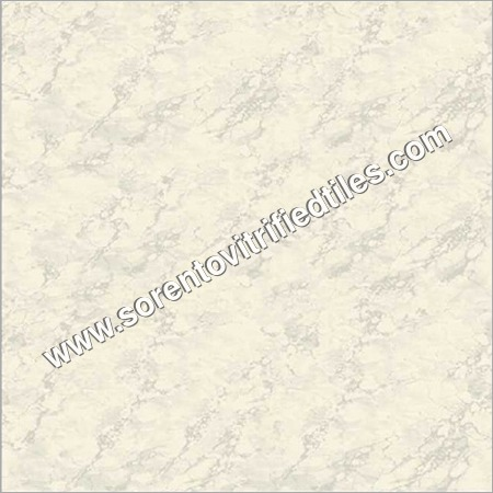 House vitrified tiles