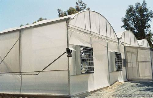 Controlled Polyhouse With Fan and Pad Cooling System