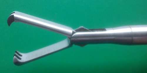 Claw Forceps 10 mm