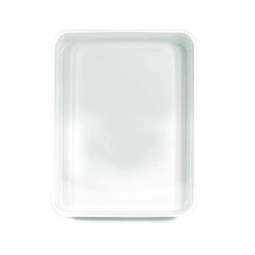 Plastic Packaging Blister