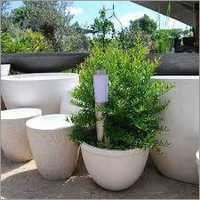 Big GRC Planters Pot