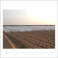 Agriculture Crop Covers