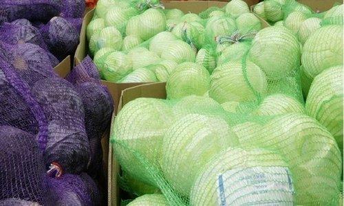 Cabbage Raschel Bag