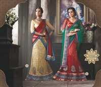 Designer Embroidered Lehenga