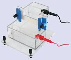 Electrophoresis System