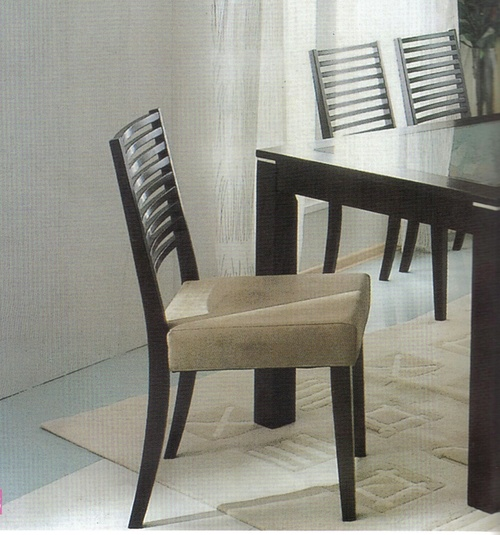Modern Dinning Set
