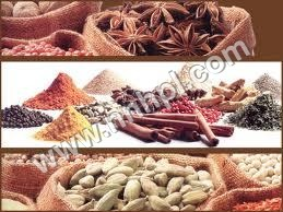 Manufacturing of Spices