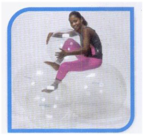 OPTI BALL (TRANSPARENT PHYSIO BALL)