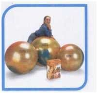 GYMNIC ARTE (Multi coloured physio balls made of burst resistant quality)