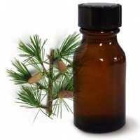 Cedarwood Oil Himalayan Rectified
