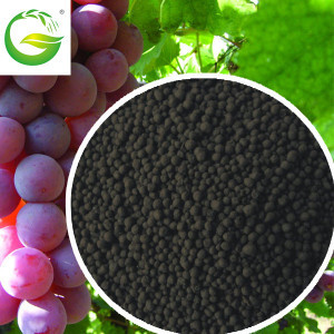Organic Liquid Fertilizers