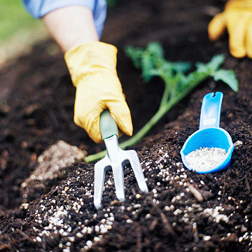 Soil Fertilizers