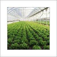 Greenhouse Polycarbonate Sheet