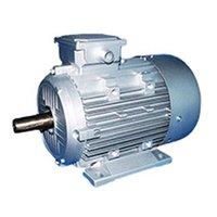 Ele. Motor 2 HP ISI (25 Kg)