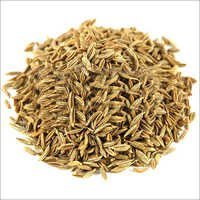 Cumin Seeds Whole Organic-1