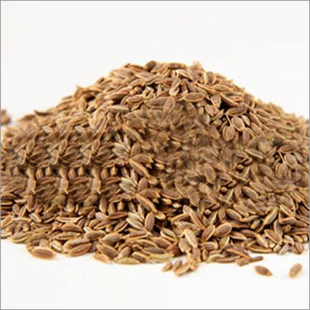 Dill Seeds-L