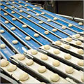Food Processing Conveyor Belts