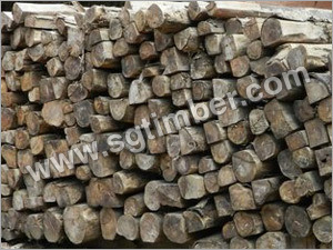 Raw Teak Wood Logs