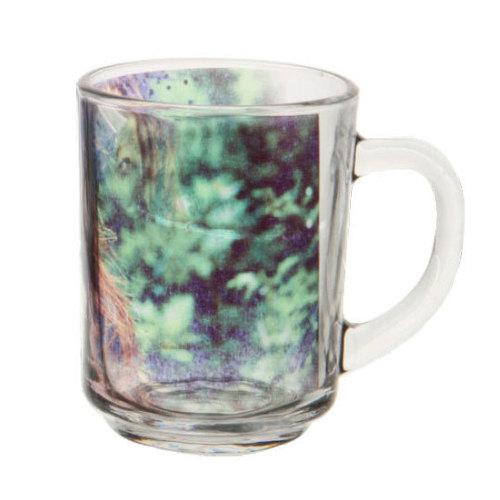 Glass Frosted MugDS-185
