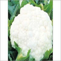 Cauliflower Kartiki