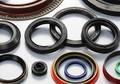 Oils Seals & O Rings