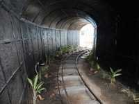 Kalna Park Toy Train Tunnel