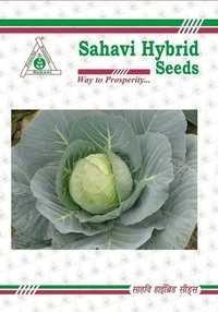 Cabbage F1 Venus-65