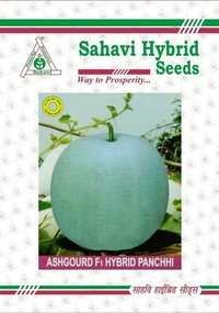 Ashgourd seeds