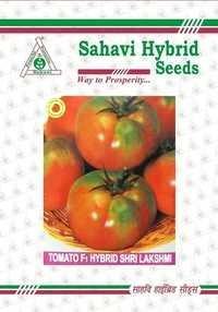 Tomato F-1 Hybrid Shri Lakshmi