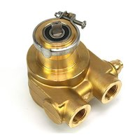 Pump Brass Housing