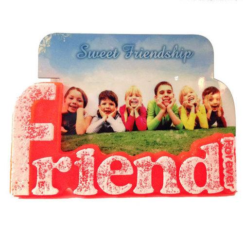 FriendsDS-