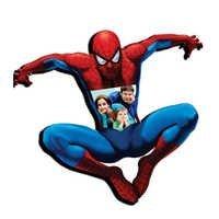 Spiderman FrameDS-