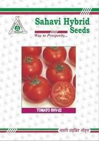 Tomato SHV-22