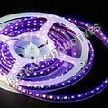 LED STRIP LIGHTS 12V/24V